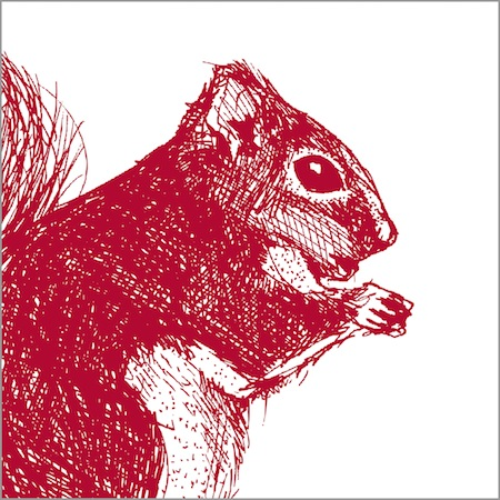 Cheery Red Squirrel Collection from Cherith Harrison