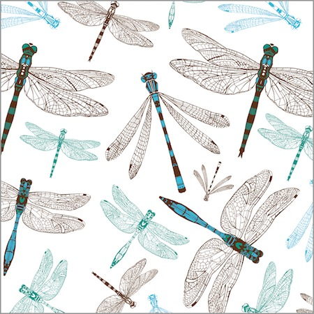 The Dynamic Dragonflies Collection by Cherith Harrison