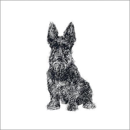 The Loyal Scottie Dog